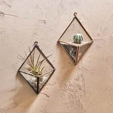 Fair-Trade Cactus & Succulent Diamond Wall Hung Planter