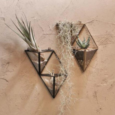 Fair-Trade Cactus & Succulent Asymmetric Wall Hung Planter