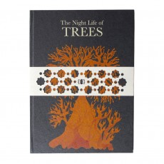 Handmade Books From Tara Books - Nightlife Of Trees