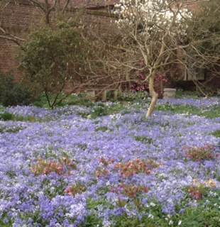 Spring Time At Sissinghurst