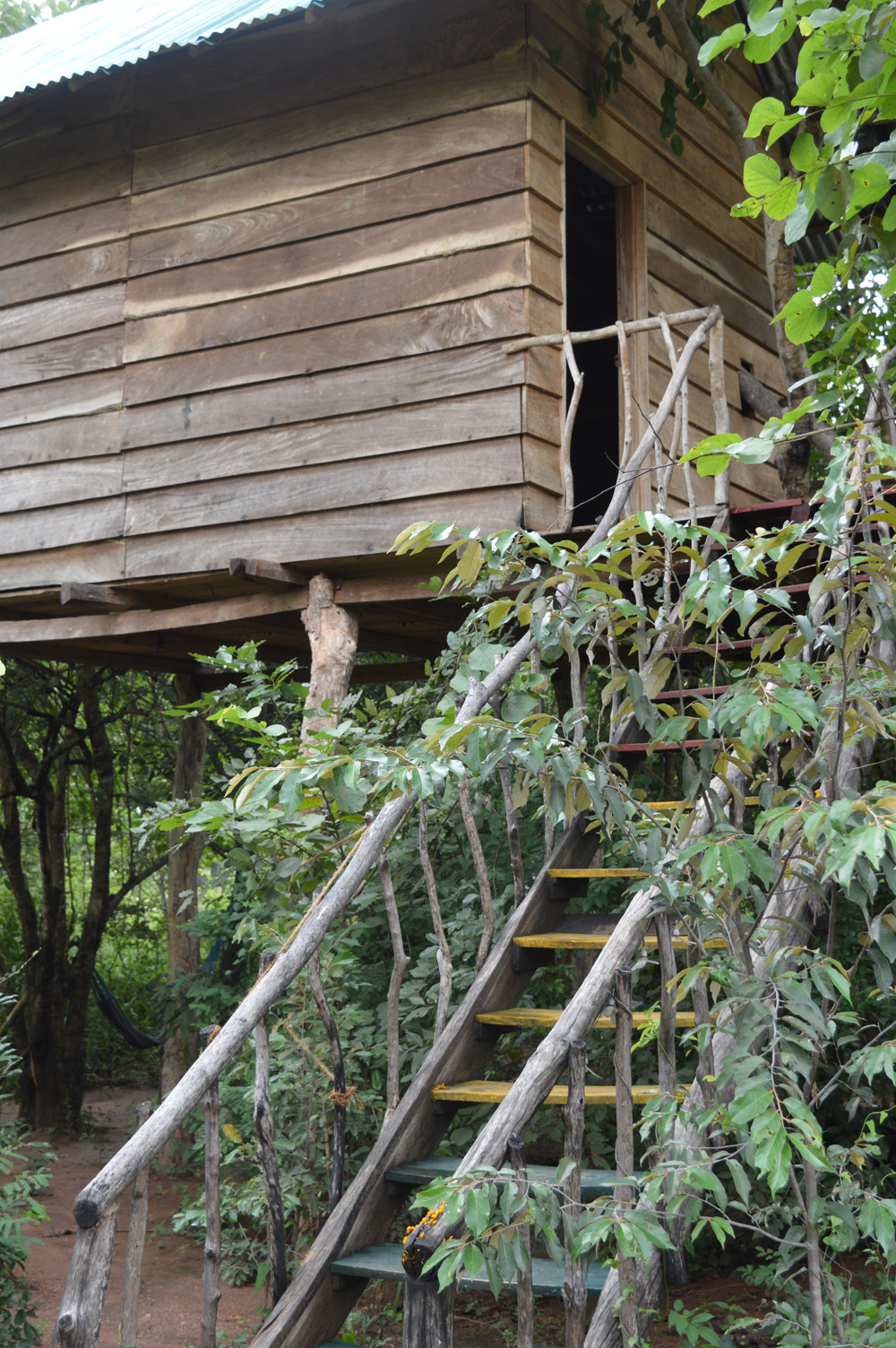 Habarana Sri Lanka and a Very Special Treehouse